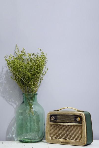 Şoklanmış Kuru Çiçek Yeşil Deniz Otu Tatarika Demeti 110 g