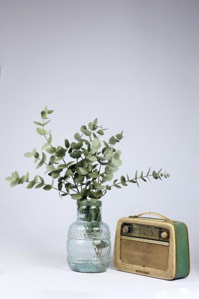 Şoklanmış Doğal Kuru Çiçek Yeşil Yapraklı Okaliptus Demeti