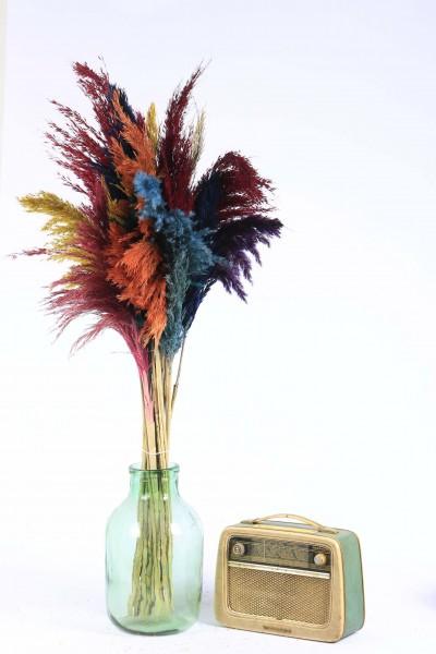 Pampas, Şoklanmış Dekoratif 15'li Karışık Kuru Çiçek Pampas 100cm