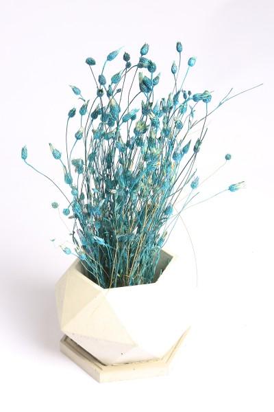 Tepsili Beton Saksıda Kuru Çiçek Mavi Sevgi Otu Tanzimi