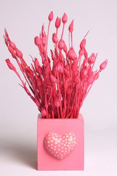 Pembe Beton Saksıda Kuru Çiçek Sevgi Otu Kuru Çiçek Tanzim