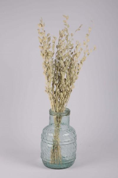 Şoklanmış Doğal Kuru Çiçek Beyaz Sedef Otu Demeti 30-40cm