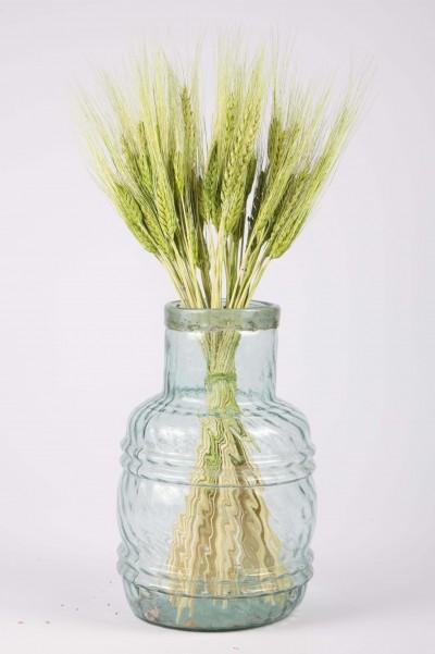 Şoklanmış Doğal Kuru Çiçek Yeşil Başak  Demeti 30-40cm