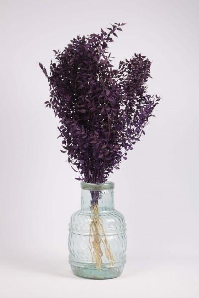 Şoklanmış Dökülmeyen Doğal Kuru Çiçek Mor Kokina 100 gr 60cm