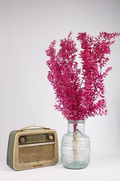 Şoklanmış Dökülmeyen Doğal Kuru Çiçek Pembe Kokina 100 gr 60cm