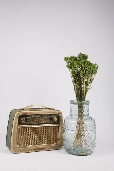 Şoklanmış Dökülmeyen Yeşil Kuru Çiçek Ayva Danası 40cm